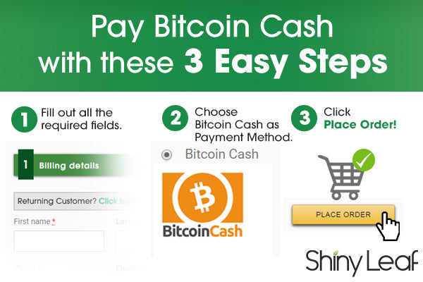 Procedures for paying with bitcoin cash
