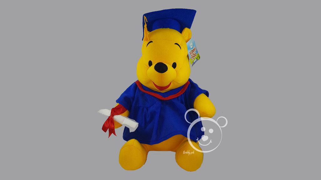 Disney Pooh Original 12 Inch - Design 1