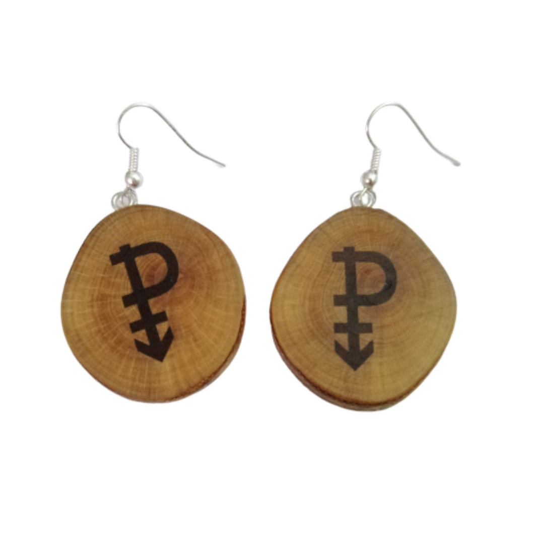 Pansexual Symbol Handmade Wood Earrings  #Pansexual