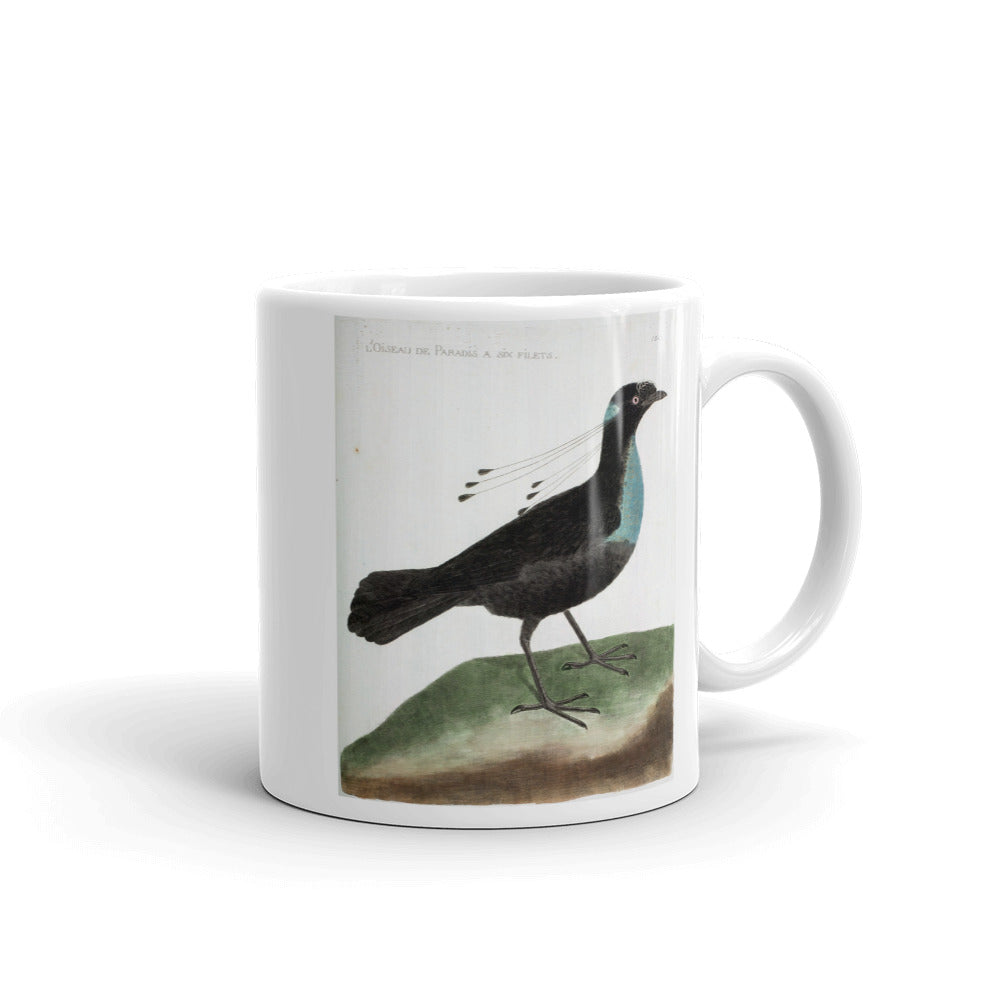 Six Shafted Bird Mug Vintage Birds Illustration Tea Coffee Mugs Gift #SixShaftedBird