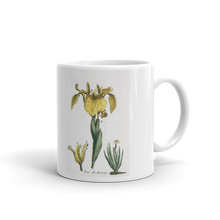 Yellow Iris Flower Mug Vintage Illustration Tea Coffee Mugs #Iris