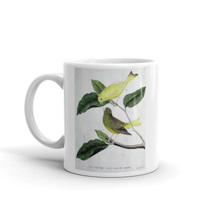 Yellow Canary Bird Mug Vintage Birds Illustration Tea Coffee Mugs Gift #Canary
