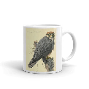 Abyssinian Lanner Falcon Mug Vintage Illustration Tea Coffee Mugs #Falcon