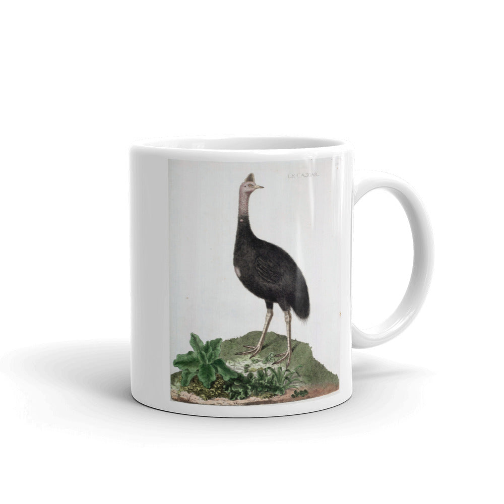 Cassowary Bird Mug Vintage Birds Illustration Tea Coffee Mugs Gift #Cassowary