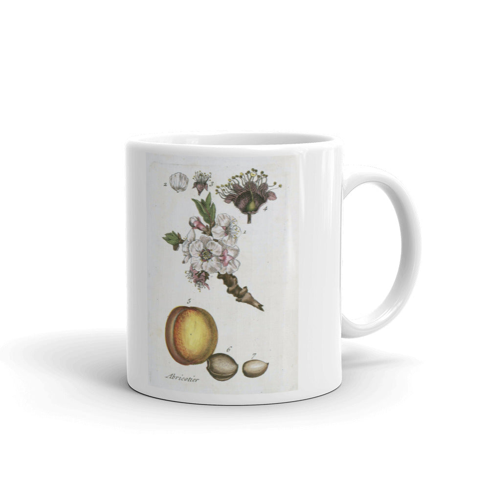 Peach Mug Vintage Fruit illustration Tea Coffee Mugs #Peach