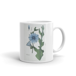 Chicory Mug Cichorium Vintage Floral illustration Coffee Mugs #Chicory