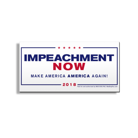 Impeachment Now Car Magnet