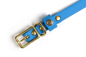 Sporting Puppy Collar - Sky Blue