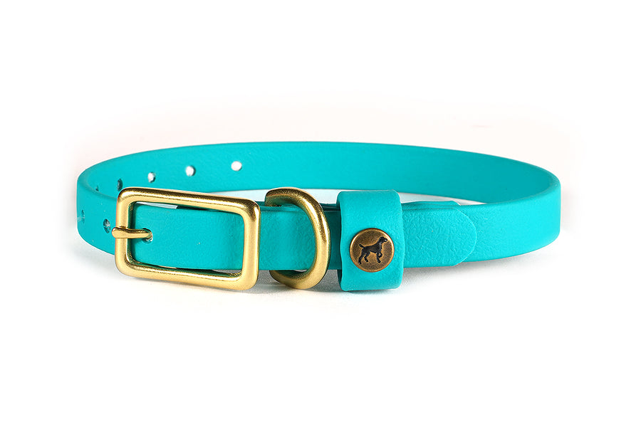 Sporting Puppy Collar - Teal