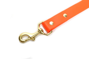Sporting Dog Leash - Blaze Orange