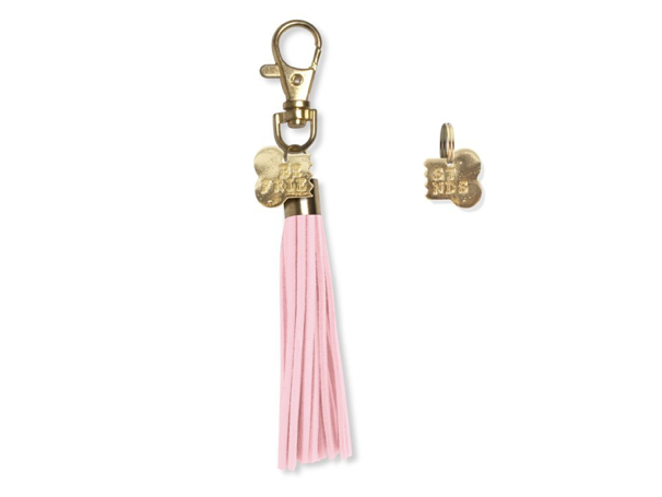Matching Best Friends Bone Collar (for pet) and Tassel Keychain (for human)