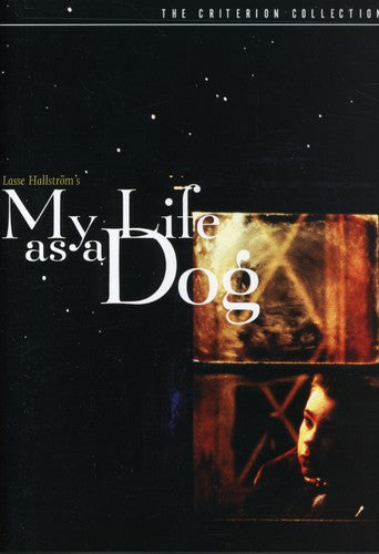 CRITERION COLLECTION: MY LIFE AS A DOG ( - CRITERION COLLECTION: MY LIFE AS A DOG (