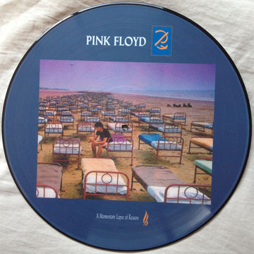 PINK FLOYD - MOMENTARY LAPSE OF REASON  - [PICTURE DISC]