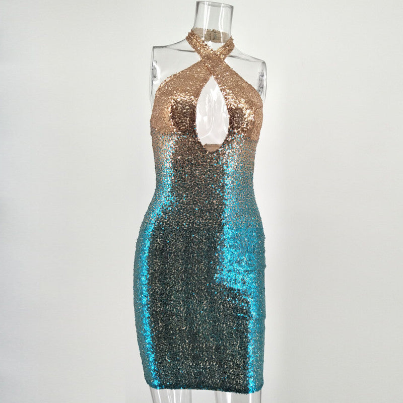 Sequined Sleeveless Multi Color Bodycon Dress