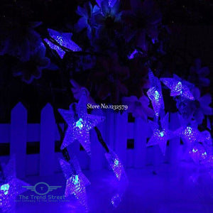Solar Powered Frosted Star String Fairy Lights blue / 5M 20LED Home Decoration