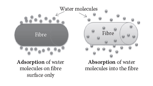 Mechanism of absorption and adsorption