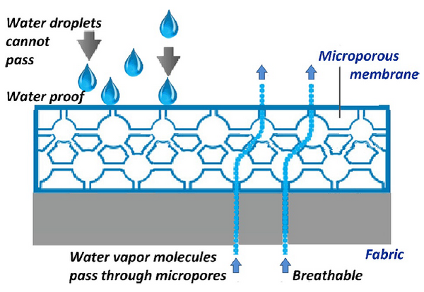 Microporous-structure-and-vapor-transfer