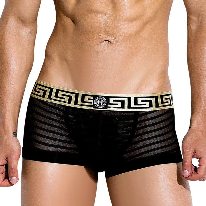 LOOCH Greetian Sheer Boxer Brief - 💦Spunk Trunks