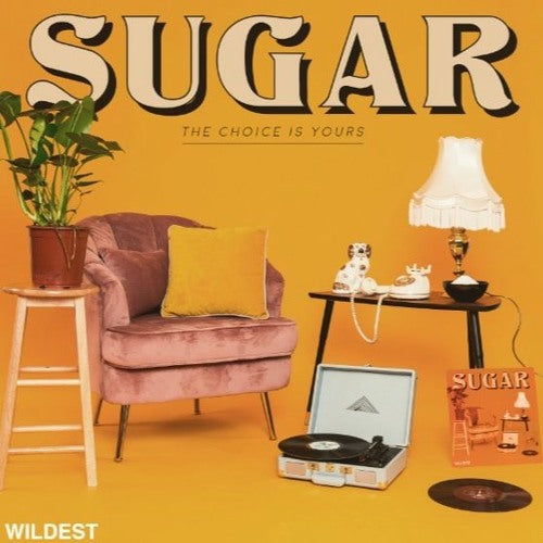 Wildest- Sugar (The Choice Is Yours) [Track Review]