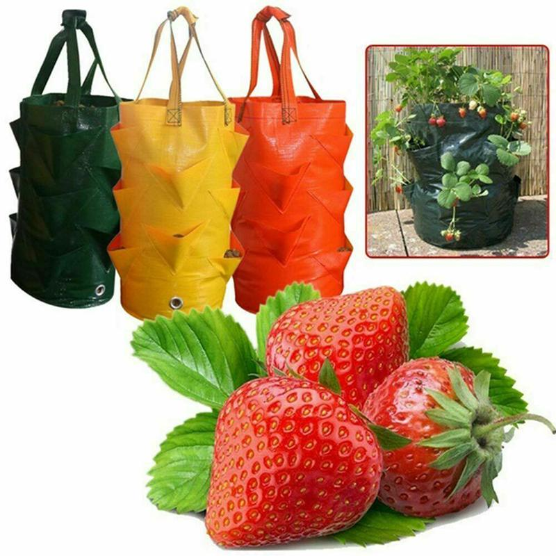 Strawberry Planting Grow Bag