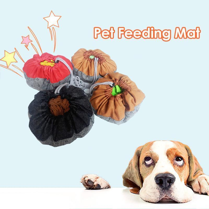Pet Feeding Training Mat - mygeniusgift