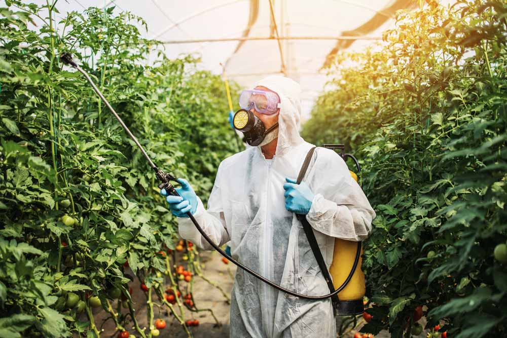 Best Grow Room Cleaners for Healthy, Happy Plants