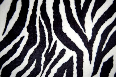 SWATCHES Zebra Minky Cuddle Fur