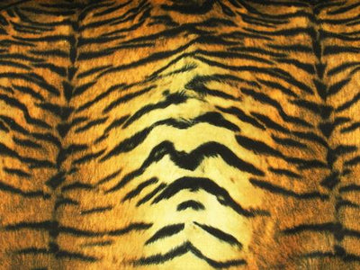 Upholstery Plush Velvet Prints ORANGE/GOLD TIGER