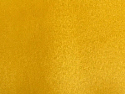Clothing PVC Gold