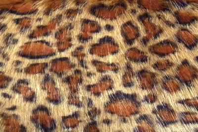 Gold Panther Minky Fur MF-33