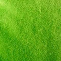 Lime Green Solid Fleece