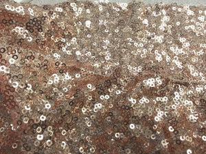 Embroidered Glitz Sequins BLUSH