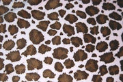 Jaguar Minky Cuddle Fur BROWN PINK