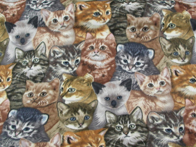 Premium Anti-Pill Kittens Fleece 536