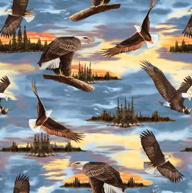 Premium Anti-Pill Sunset Eagles Fleece 569