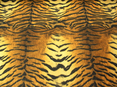 Tiger Stripes Spandex SP-48
