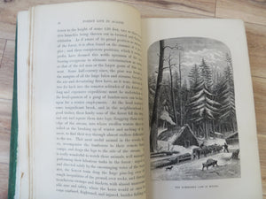 Forest Life in Acadie. Sketches of Sport and Natural History in the Lower Provinces of the Canadian Dominion