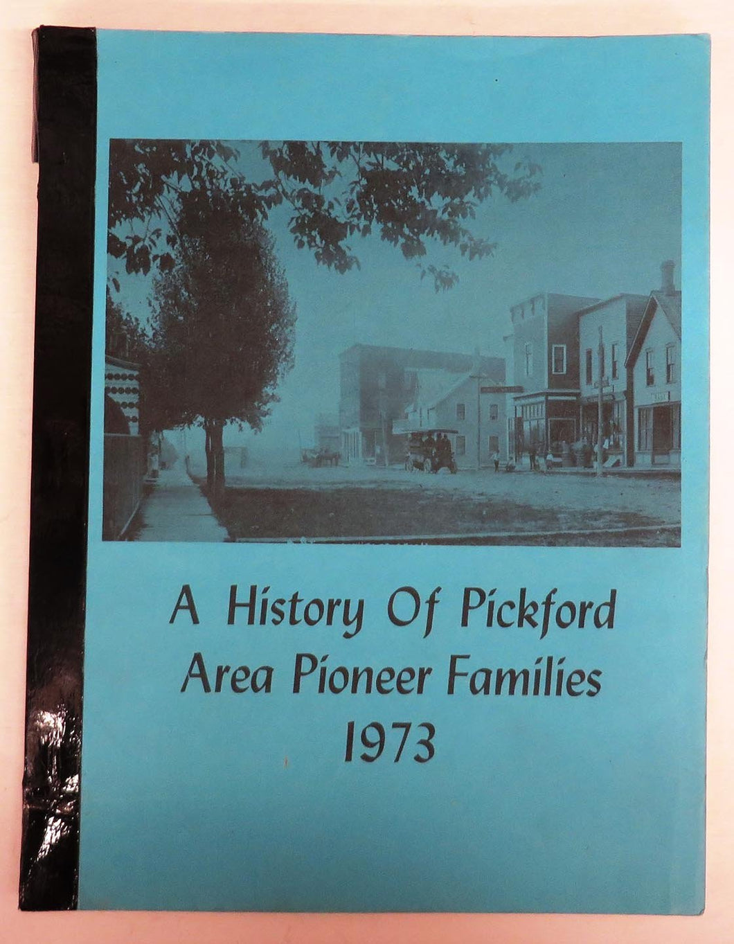 A History of Pickford Area Pioneer Families