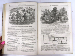 The Genesee Farmer. Vol. XXI, 1860