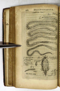 Nicolai Tulpii Amstelredamensis Observationes Medicae (aka The Book of Monsters)
