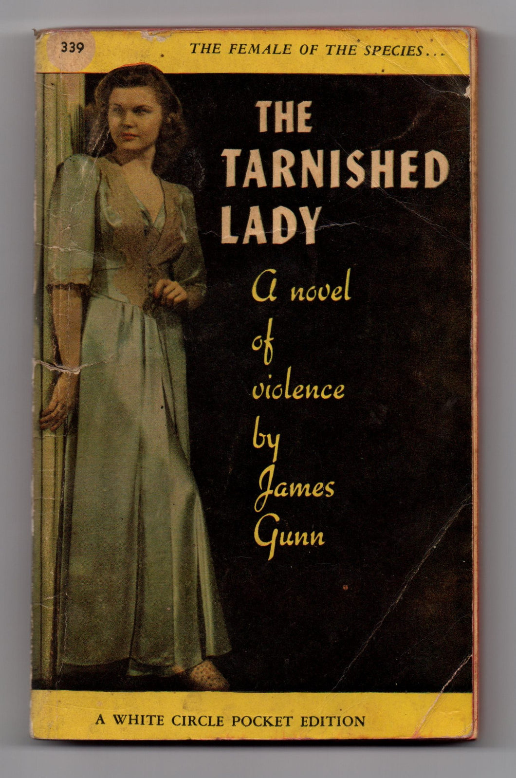 The Tarnished Lady: A novel of violence