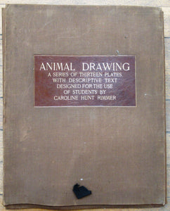 Animal Drawing: A Series of Thirteen Plates with Descriptive Text Designed for the Use of Students