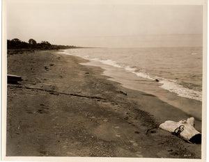 Photo of Point Pelee Beach