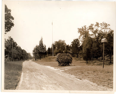 Photo of road at Point Pelee