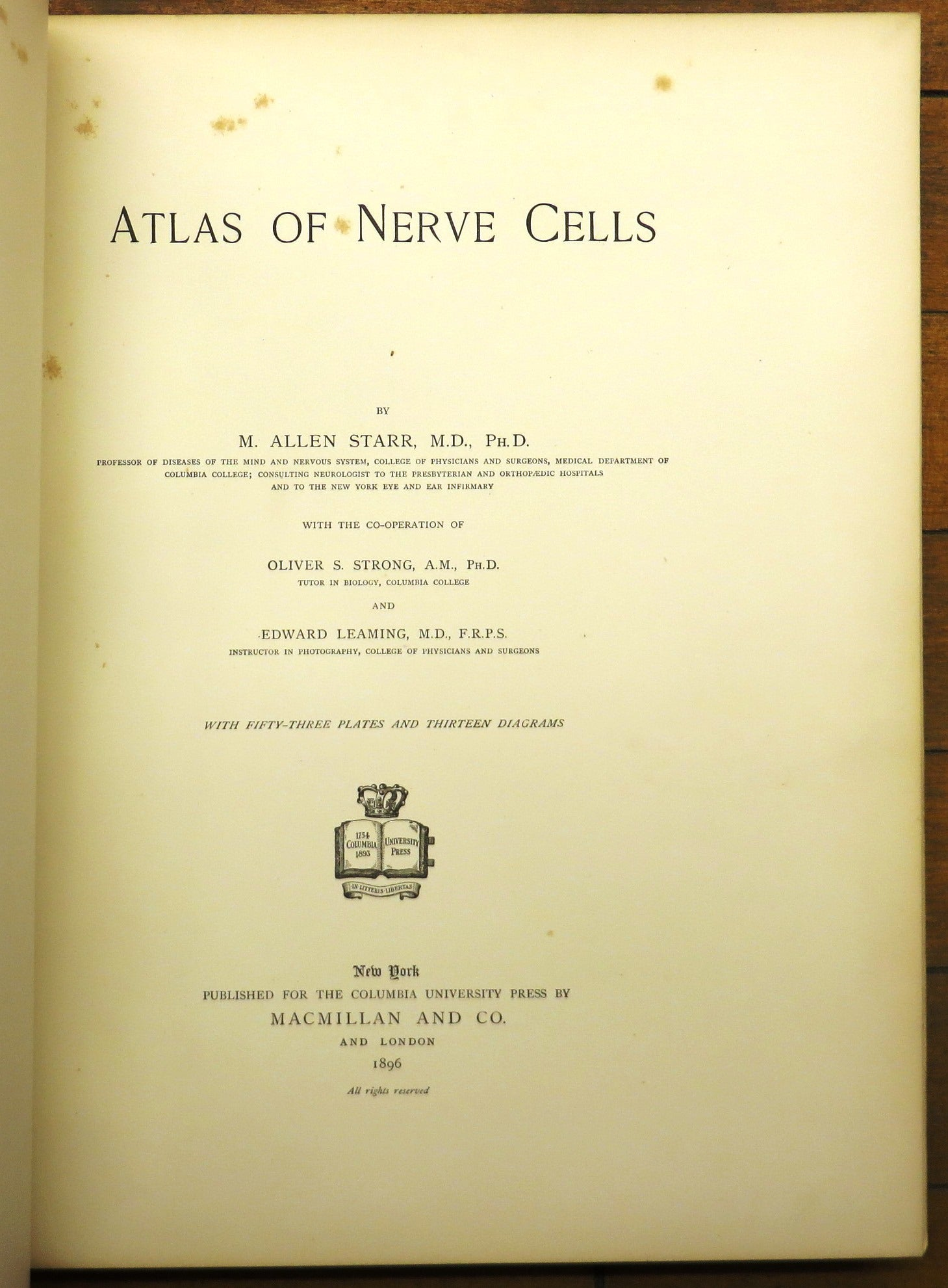 Atlas of Nerve Cells – Attic Books