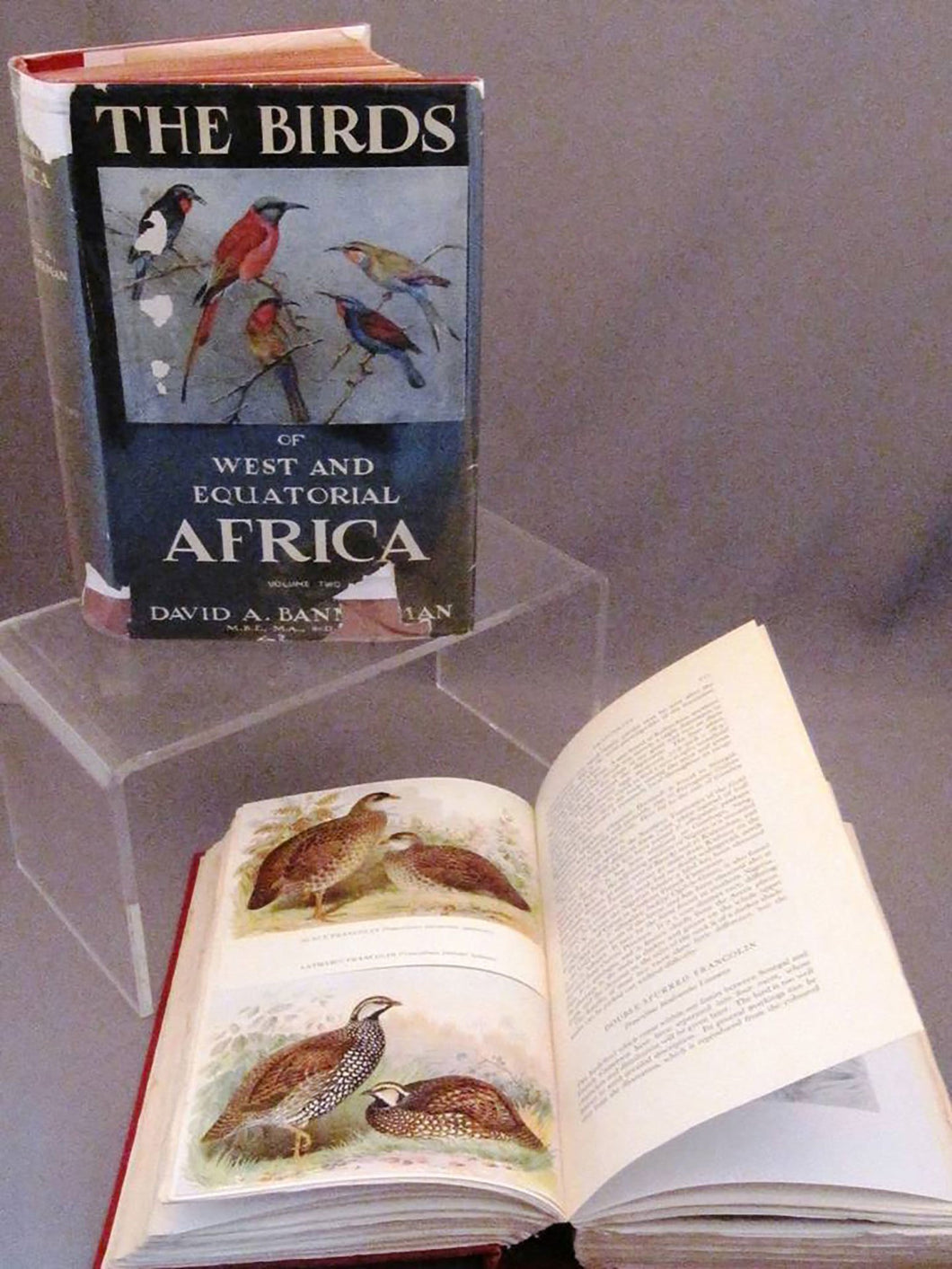 The Birds of West and Equatorial Africa. Vol. 1: Struthionidae to Picidae. Vol. 2: Eurylaemidae to Ploceidae
