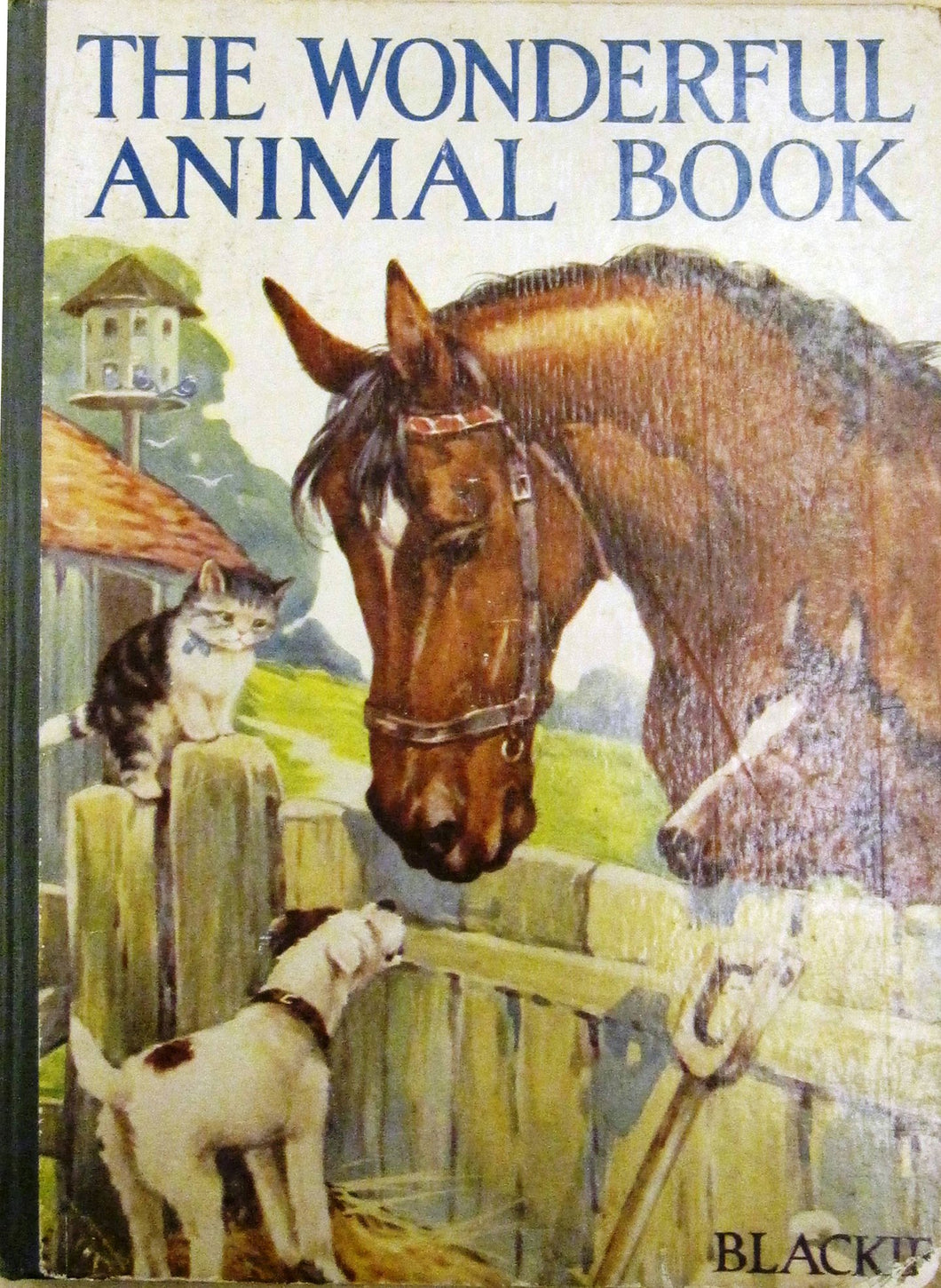 The Wonderful Animal Book