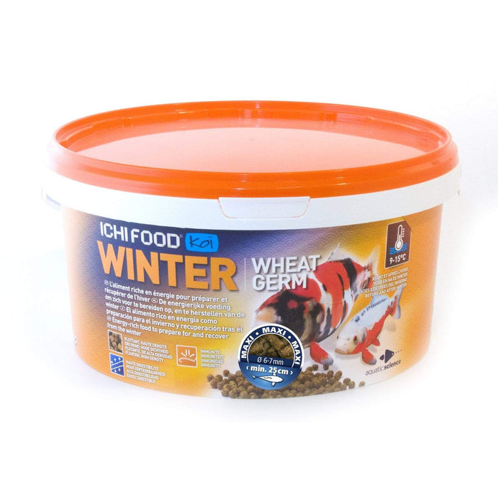 Aquatic Sciences Nourriture ICHI FOOD WINTER MAXI 6-7 MM 1 KG 5425009256633 ICFWIN601B