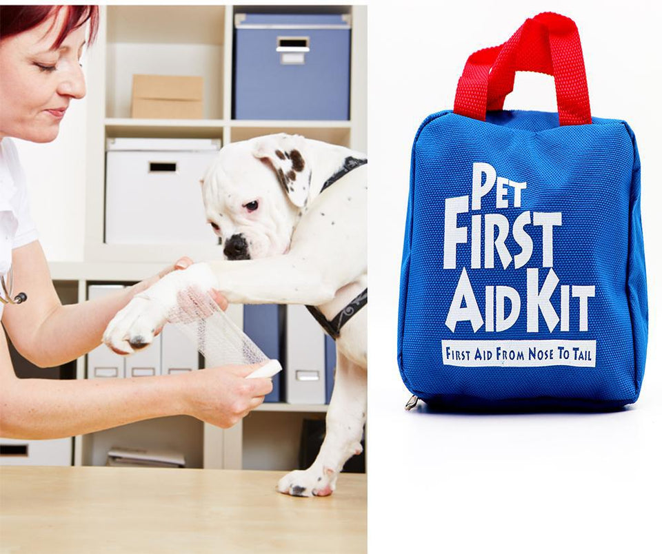 Pet First Aid Kit-Mewcatx