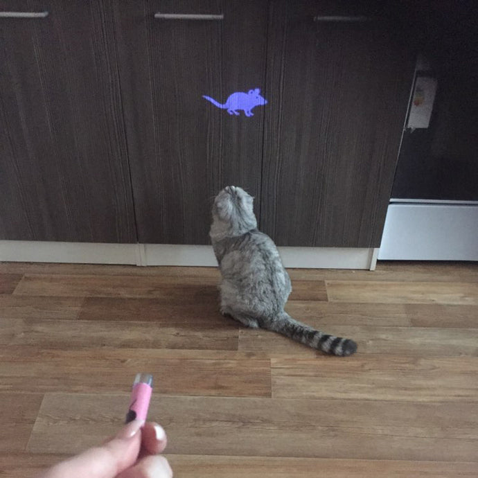 Laser Cat Training Mouse Toy